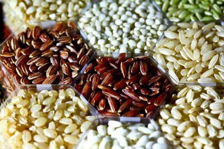 Rice grains. Par IRRI Images. CC-BY. Source : Wikimedia Commons.
